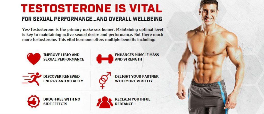 Testosterone Booster Tongkat Ali Singapore